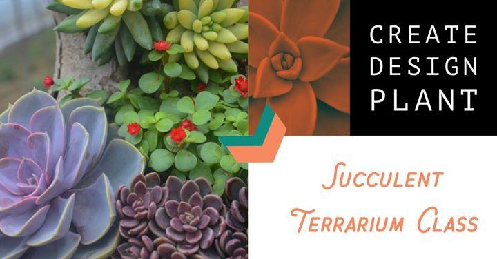 Succulent Terrarium Class